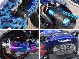 Yamaha YZF 600R